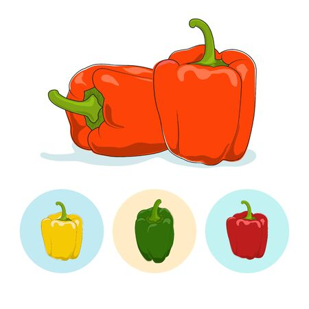 peper: Orange bell pepper  on white background,set of three round colorful icons, yellow,red and green sweet pepper, icon capsicums ,vector illustration