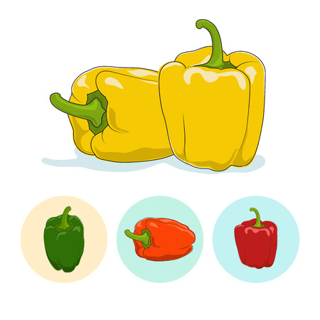 flavoring: Yellow bell pepper  on white background,set of three round colorful icons, orange,red and green sweet pepper, icon capsicums ,vector illustration