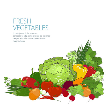 Healthy food, fresh raw vegetables isolated on white background, organic food, vector illustration
