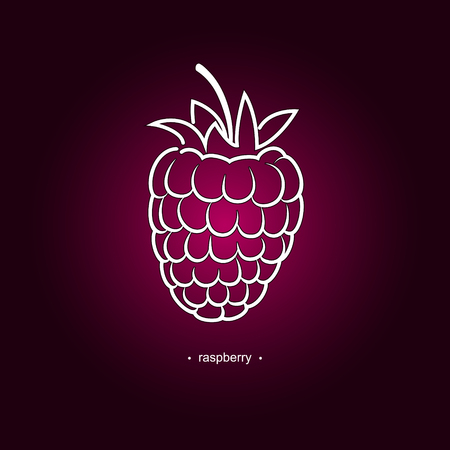 contours: Image Raspberries in the Contours on a Dark Pink Background, Vector Illustration Illustration