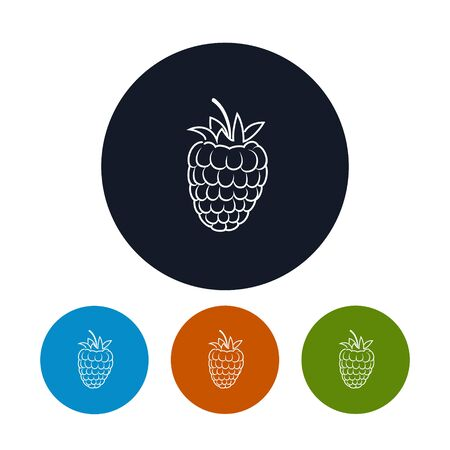 contours: Icon Raspberries  ,the Four Types of Colorful Round Icons Raspberries  in the Contours, Vector Illustration