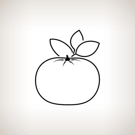 tangerine: Mandarin  ,Image Tangerine in the Contours on a Light Background, Black and White Vector Illustration