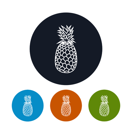 Icon Pineapple ,the Four Types of Colorful Round Icons Ananas in the Contours, Vector Illustration