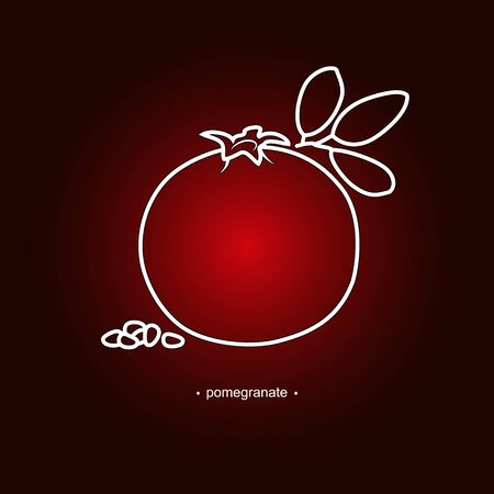 ripened: Image Pomegranate in the Contours on a Dark Red Background, Vector Illustration Illustration
