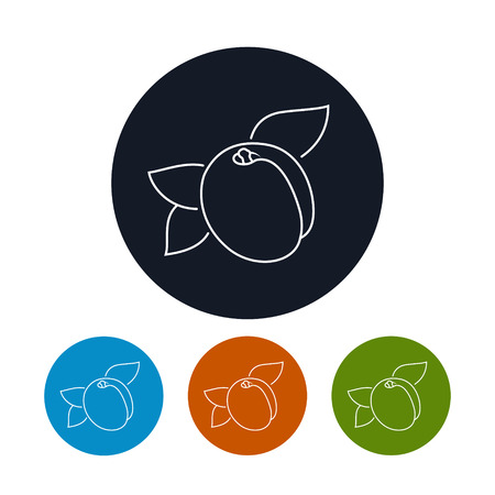 konturen: Icon Apricot, die vier Arten von Colorful Round Icons Apricot in den Konturen, Vektor-Illustration