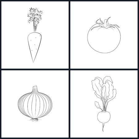 onions: Set of Vegetable Icons , Icons Carrots, Tomatoes, Onions, Beet in the Contours, Vector Illustration