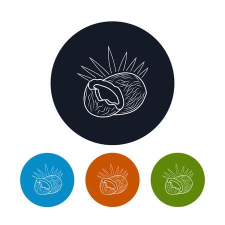 coconut leaves: Icon Coconut ,the Four Types of Colorful Round Icons Coco in the Contours, Vector Illustration Illustration