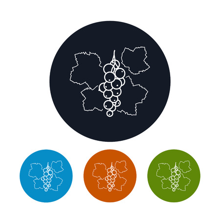 レッドカラント: アイコン スグリ、4 種類のカラフルな丸いアイコンのレッドカラントの輪郭のベクトル イラスト