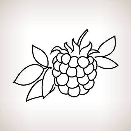 dewberry: Blackberry ,Image Dewberry in the Contours on a Light Background, Black and White Vector Illustration