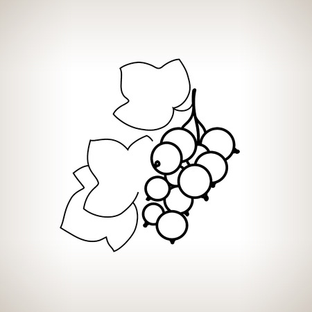 ripened: Blackcurrant ,Image Blackcurrant in the Contours on a Light Background, Black and White Vector Illustration