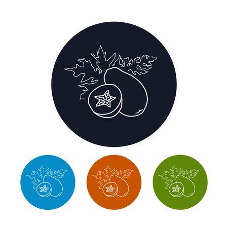 icone tonde: Icona Papaya, i quattro tipi di icone colorate rotonde Pawpaw nei contorni, illustrazione vettoriale Vettoriali