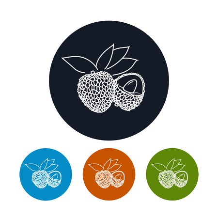 lichi: Icon Lichee ,the Four Types of Colorful Round Icons  Lichi  in the Contours, Vector Illustration Illustration