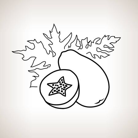 contours: Papaya ,Image Pawpaw in the Contours on a Light Background, Black and White Vector Illustration Illustration