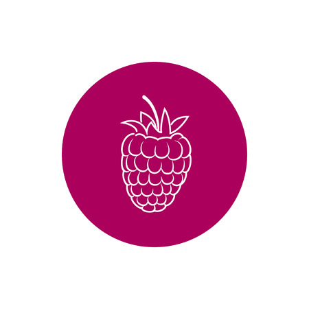 honeyed: Raspberries, Colorful Round  Icon Raspberries, Fruit Icon, Berry Icon, Vector Illustration