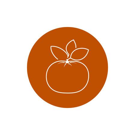 tangerine: Mandarin, Colorful Round  Icon Tangerine, Fruit Icon,  Vector Illustration