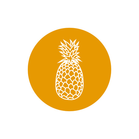 ananas: Pineapple, Colorful Round  Icon  Ananas, Fruit Icon,  Vector Illustration