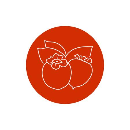 persimmon: Persimmon, Colorful Round  Icon Persimmon Illustration