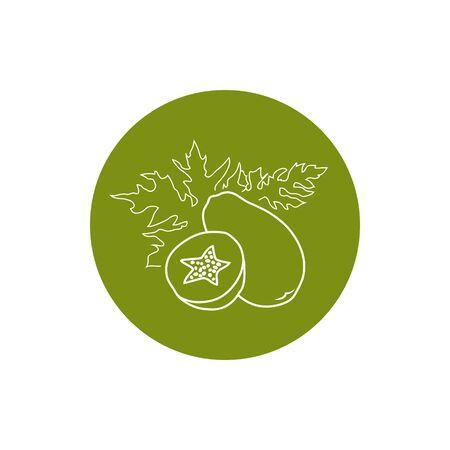 papaya: Papaya, Colorful Round  Icon Pawpaw Illustration