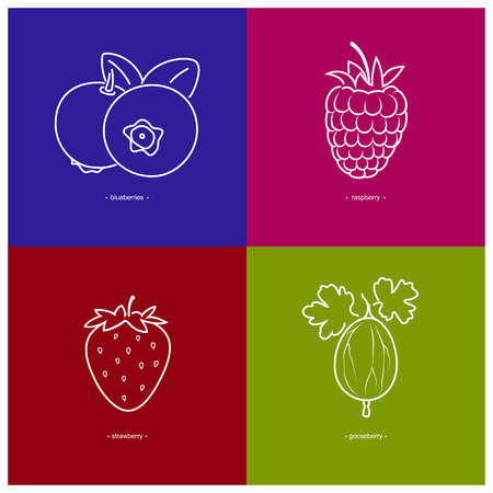 raspberry pink: Image Strawberry,Raspberries,Blueberries,Gooseberry  in the Contours on a  Colored Background, Vector Illustration