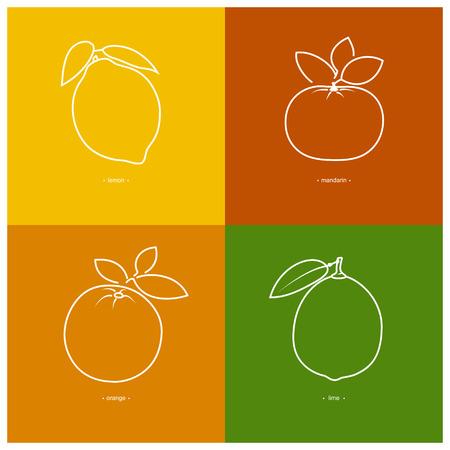 lemon lime: Icona mandarino, arancio, limone, lime nei contorni su uno sfondo colorato, illustrazione vettoriale Vettoriali