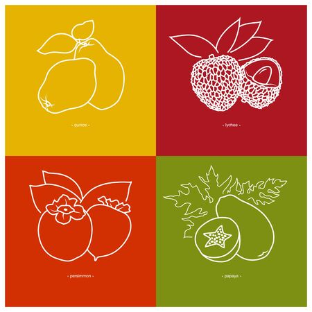 quince: Icon Quince,  Lichee, Persimmon, Papaya   in the Contours on a  Colored Background, Vector Illustration Illustration