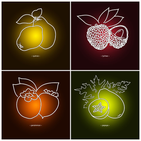 quince: Icon Persimmon, Papaya, Quince,  Lichee   in the Contours on a  Colored Background, Vector Illustration