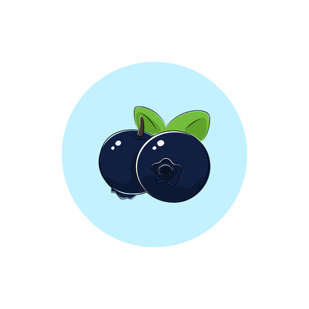 Blueberries, Icon Colorful Blueberries, Fruit Icon, Berry Icon , Vector Illustration