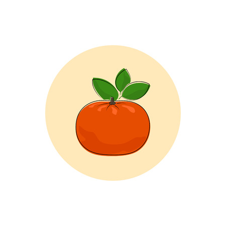 honeyed: Mandarin, Round Icon Colorful  Tangerine, Fruit Icon, Citrus Icon , Vector Illustration Illustration