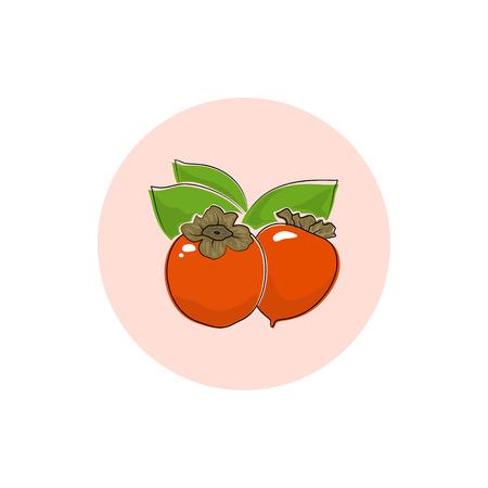 caqui: Persimmon, Round �cone colorido Persimmon, Fruta �cone, Ilustra��o vetorial