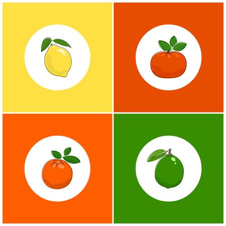 fruitage: Fruit Icons, Citrus Icon, Round White Fruit Icons on Colorful Background, Lemon Icon, Lime Icon , Orange Icon, Mandarin Icon, Vector Illustration