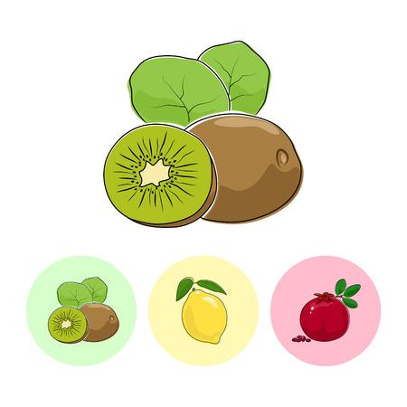kiwi fruta: Fruta Kiwi sobre fondo blanco, Conjunto de tres iconos Ronda coloridas kiwi, limón y Granada, ilustración vectorial