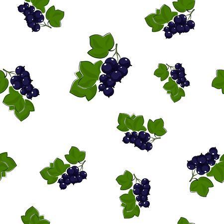 blackcurrant: Seamless Pattern of Blackcurrant  Illustration