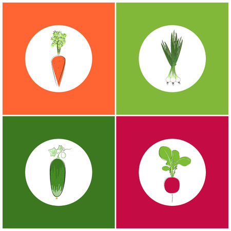chive: Set of Vegetables Icons,Icon Carrot with tops of vegetable, Icon Cucumber with Leaves, Icon Radish, Icon Green Onion Illustration