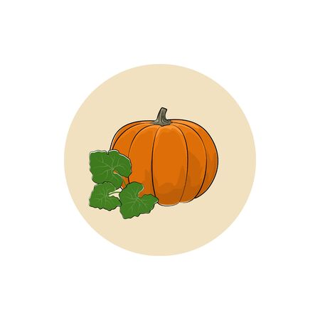 edible: Icon Pumpkin , Icon of a Ripe Orange Pumpkin, Icon Vegetable Gourd ,Icon Edible Fruit,  Vector Illustration