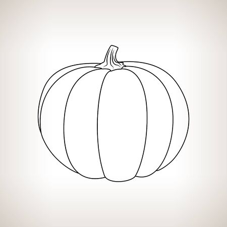 contours: Pumpkin ,Image Pumpkin in the Contours on a Light Background, Black and White Vector Illustration
