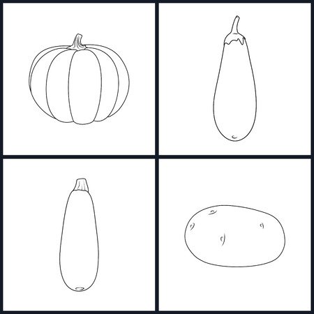 courgette: Set of Vegetable Icons , Icons Potato,Eggplant, Zucchini Courgette,Pumpkin in the Contours, Black and White Vector Illustration