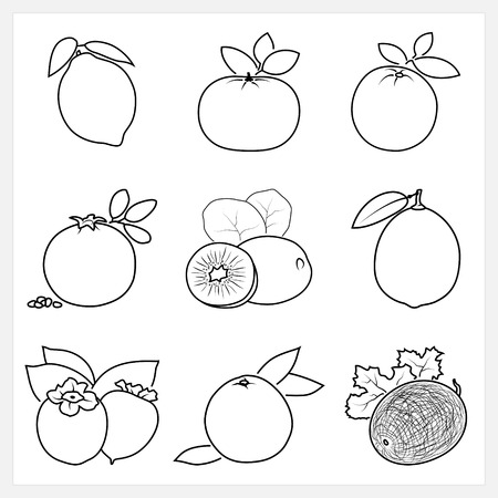 mandarin orange: Set of Fruit Linear Icons, Icons Lemon,Mandarin,Orange,Pomegranate, Kiwifruit, Lime, Persimmon,Grapefruit ,Melon,  Isolated on White Background , Vector Illustration Illustration