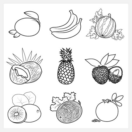 lichee: Set of Fruit Linear Icons ,Icons Mango, Banana,Watermelon, Coconut, Pineapple, Lichee,Kiwifruit,Melon, Pomegranate, Isolated on White Background , Vector Illustration Illustration