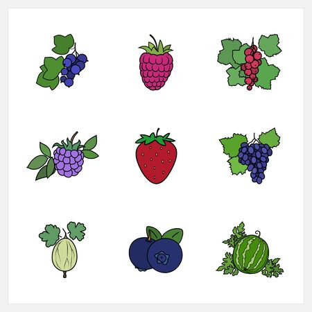 fruitage: Berry, Flat Design , Isolated on White Background , Set of Fruit Icons , Vector Illustration