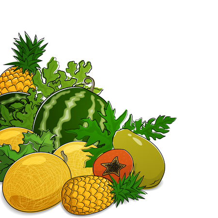 papaw: Juicy Tropical Fruits and Berries, Fresh Eco Fruits, Healthy Food Concept, Natural Organic Concept, Isolated on White Background, Vector Illustration