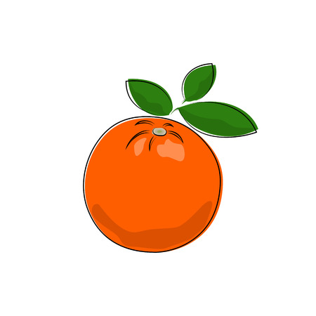 honeyed: Citrus Orange Isolated on White, Tropical Fruit Orange, Vector Illustration Illustration