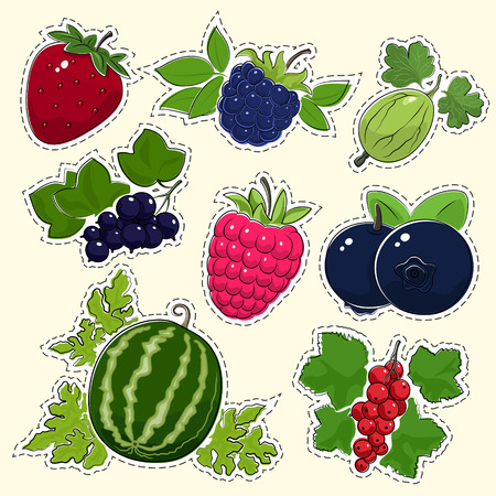 dewberry: Set of Fruit Berry Stickers, Pins or Patches, Strawberry with Dewberry and Gooseberry, Blackcurrant with Raspberries and Blueberries, Watermelon and Redcurrant, Vector Illustration