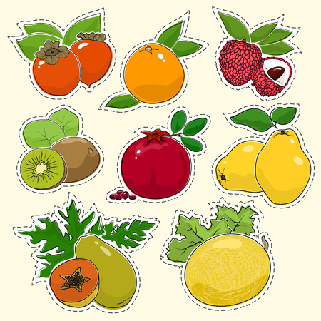 Set of Tropical Fruit Stickers, Pins or Patches, Persimmon with Grapefruit and Lychees, Kiwifruit with Pomegranate and Quince, Papaya and Melon, Vector Illustration