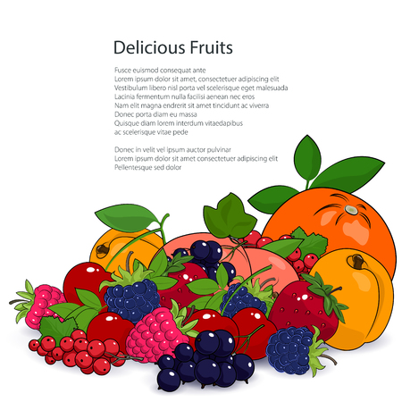 dewberry: Juicy Summer Fruits and Berries Isolated on a White Background and the Text, Fresh Eco and Healthy Food Concept, Poster Brochure Flyer Design, Vector Illustration Illustration