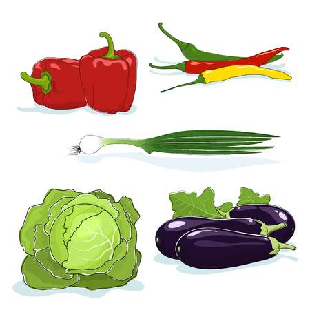 capsaicin: Fresh Gardening Vegetables Isolated on a White Background, Red Bell Peppers and Green Onions, Hot Chile Peppers and White Cabbage, Eggplant, Vector Illustration Illustration