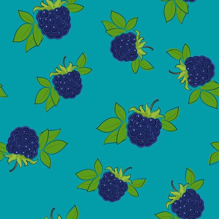Seamless Pattern of Blackberry , Fruit Berry on Azure Background, Vector Illustration