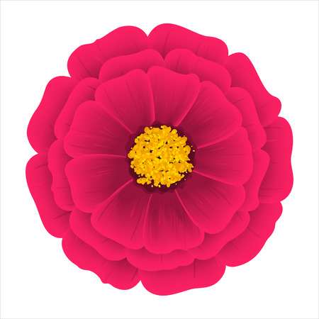 Flower Dahlia Isolated on a White Background, Vector Illustration