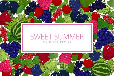 Flyer of fruits design vector illustration