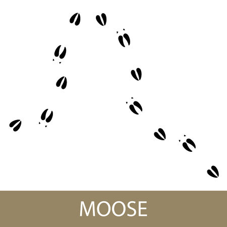 Footprints of Forest Animal, Traces of a Moose , Vector Illustration