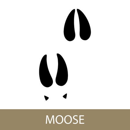 Track of Forest Animal, Trace of a Moose Animal. Vector Illustration.